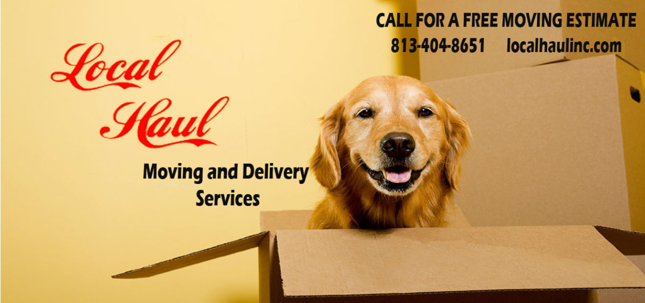 Affordable local moving & delivery service for Brandon Fl